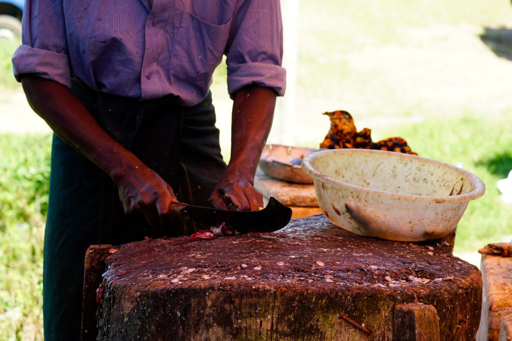 Sri Lanke fürs Video 139