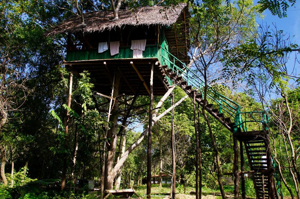 Sri Lanka Baumhaus